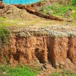 Stock Photo: Layer of soil beneath