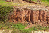 Layer of soil beneath — Stock Photo