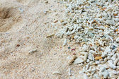 Coral sand — Stock Photo