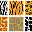 Stock Vector: Animal skin