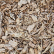 Wood sawdust and chips — Stock Photo #13166514