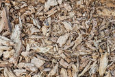 Wood sawdust and chips — Stock Photo
