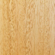 Vertical light brown wooden texture — Stock Photo #13494186