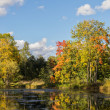 Autumn landscape on the river bank — Stock Photo
