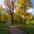 Autumn landscape in the park - Stock Photo