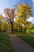 Autumn landscape in the park — Stock Photo