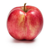 Ass shaped red apple — Photo