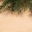 Fir branch on wood surface — Stock Photo