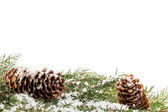 Christmas ornament with cones — Stock Photo