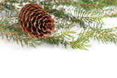 Christmas ornament with cone — Stock Photo