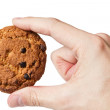 Cookie with chocolate pieces in hand — Stock Photo