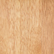 High detailed light wood texture — Stock Photo