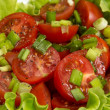 Fresh light salad with cherry tomatoes and chives — Stock Photo #21139953