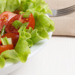 Fresh light salad with cherry tomatoes and chives — Stock Photo #21586825