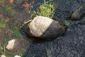 Rocks in river — Stock Photo