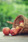 Gala apples in a wicker basket — Stock Photo