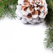 Christmas tree twig with cone composition — Stock Photo
