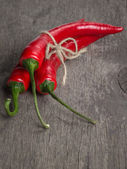 Tied bunch of chili peppers — Stock Photo