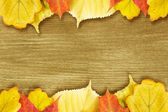 Different autumn leaves opn gold wood plank — Stock Photo