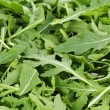Fresh arugula — Stock Photo #31797557