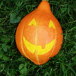 Halloween pumpkin on green grass — ストック写真