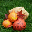 Three Halloween pumpkins on green grass — Stock Photo