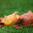 Three Halloween pumpkins on green grass — Stockfoto
