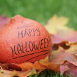 Stock Photo: Halloween pumpkin on autumn leaves