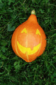 Halloween pumpkin on green grass — Stok fotoğraf