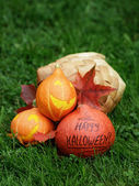 Three Halloween pumpkins on green grass — Стоковое фото