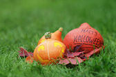 Three Halloween pumpkins on green grass — Stock fotografie