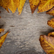 Autumn leaves on wood surface — Stock Photo