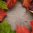 Frame from autumn maple leaves on wood surface — Foto de Stock