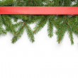 Border from fir twigs and ribbon with shadow — Stock Photo