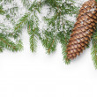 Border from fir twigs, cone and fake snow — Stock Photo