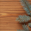 Blue spruce twig on wooden plank — Stock Photo