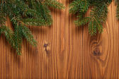 Green spruce twig on wooden plank — Stock Photo