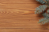 Blue spruce twig on wooden plank — Foto de Stock