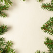 Fir branches on old paper — Stock Photo