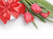 Composition with tulips and gift box — Stock Photo