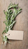 Fresh rosemary bunch — ストック写真