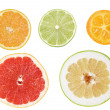 Set of cuts from citrus fruits — Stok fotoğraf