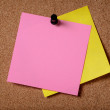 Stock Photo: Two reminders sticky note on cork board