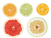 Set of cuts from citrus fruits — Stock Photo