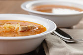 Traditional russian cabbage soup shchi — Foto Stock