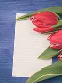 Tulip with blank paper note — 图库照片