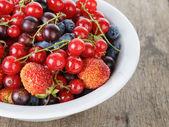 Fresh garden berries in bowl — Stock Photo