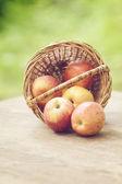 Manzanas gala en la cesta sobre la vieja mesa — Foto de Stock