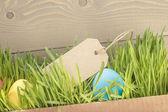 Easter eggs hiden in grass border composition — Stock Photo