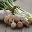 Bunch of fresh green onions and garlic — Stock Photo